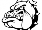 Bulldogs beat Fordland, fall to Mansfield